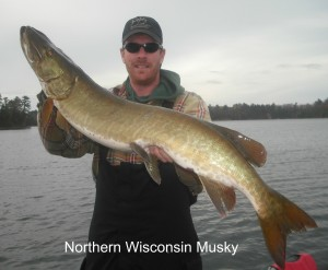 Wisconsin fishing guide in minocqua eagle river st germain for Eagle river wi fishing report