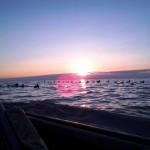 0alayout sunrise